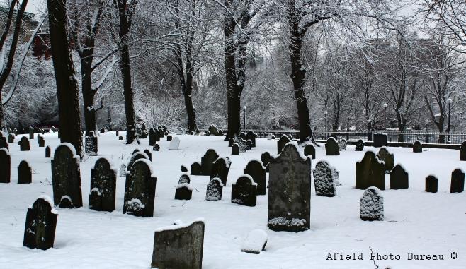 Common_graves