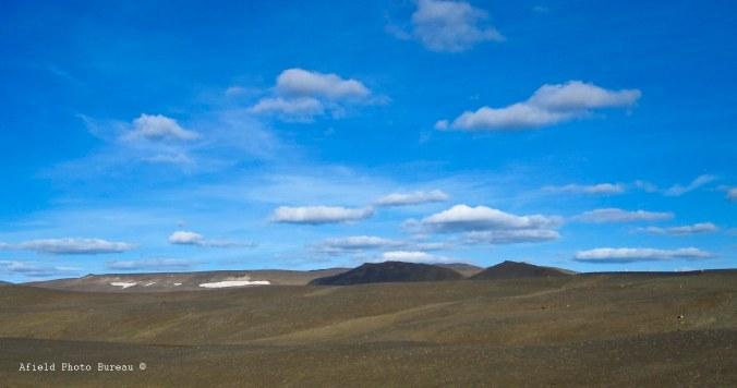 Desolate. By Blondie