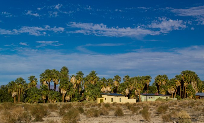 View of the 29 Palms Inn from the artist studios. There was also a small native burial ground nearby and whenever you walk by it everything seems to get quiet.