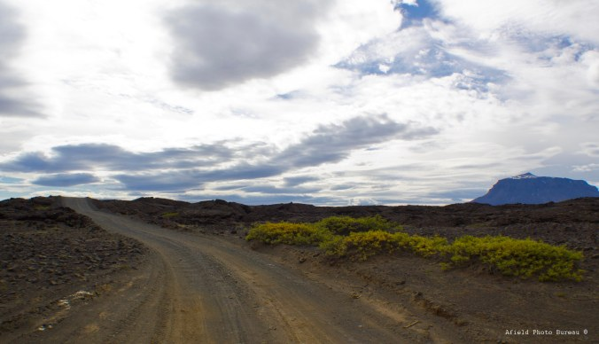 Typical lousy road conditions - just entering a large lava field where we met a garbage truck at a blind corner.