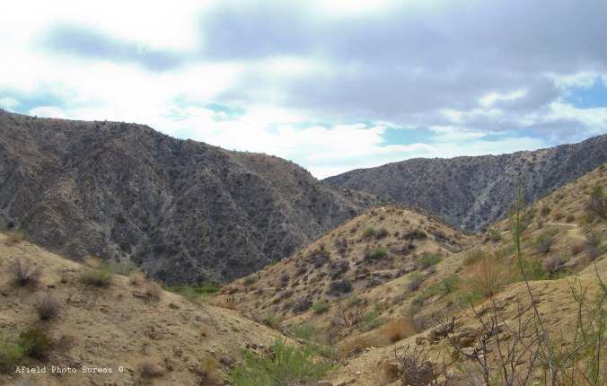 Big Morongo Canyon just before the rains came. Who knew you should bring rain gear to the desert.