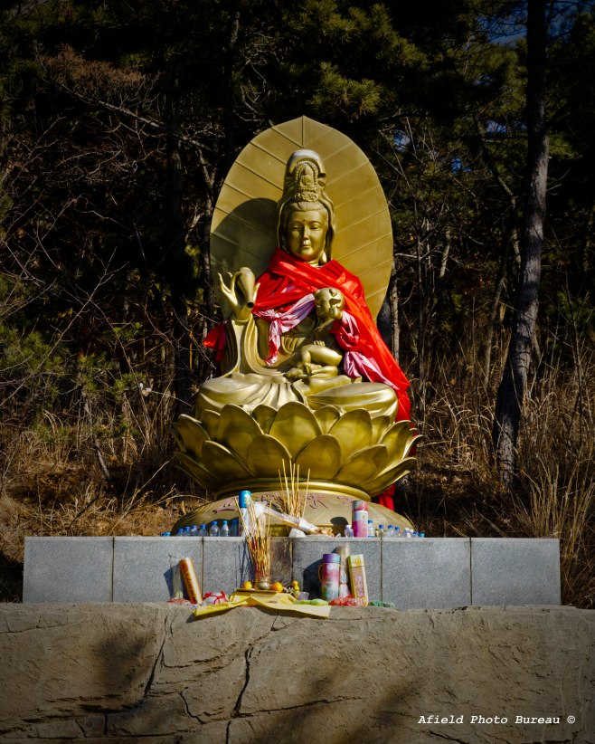 This is a fertility shrine that people make offerings to in order to become...fertile. Most people still only have one child here so they make offerings to make it count.