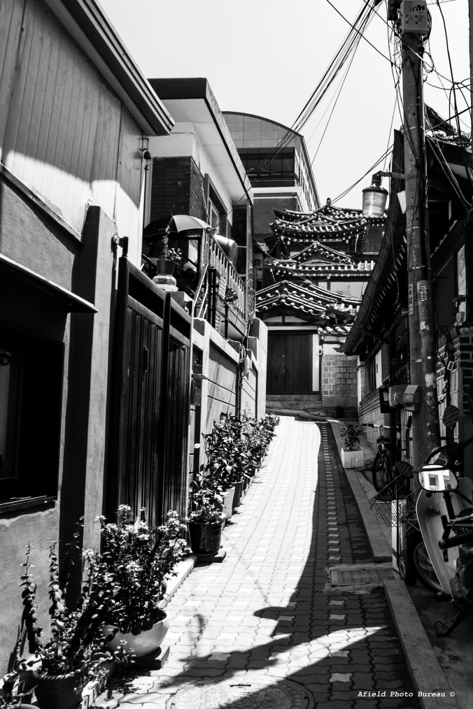 Everything was so damned tidy in Seoul. I am sure there are seedy bit but even the alleyways we saw were...inviting.